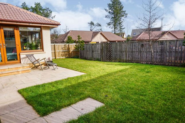 Rear Garden of Peterkin Place, Lossiemouth IV31