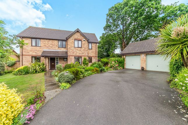 Thumbnail Detached house for sale in Coppice End, Highwoods, Colchester