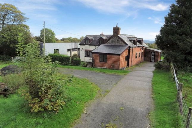 Thumbnail Detached house for sale in Pant Y Celyn, Adfa, Newtown, Powys
