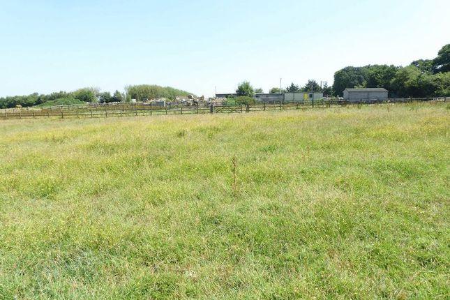 Thumbnail Land for sale in Sampford Courtenay, Okehampton