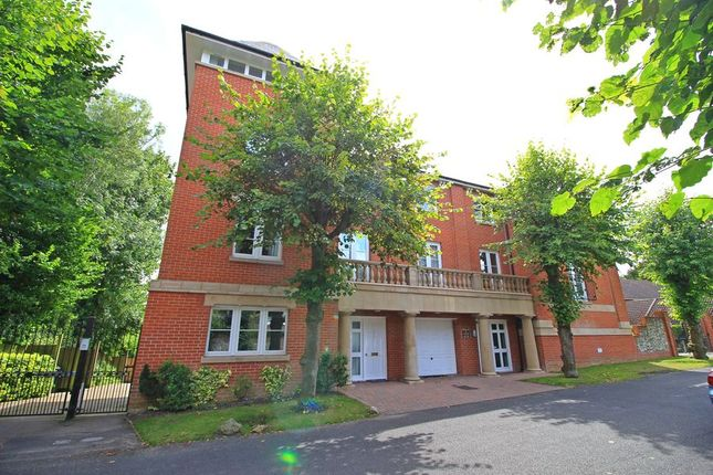 Thumbnail Flat to rent in Northbrook Avenue, Winchester