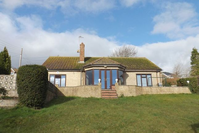 Thumbnail Detached bungalow for sale in Barline, Beer, Seaton