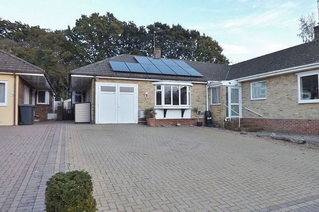 Thumbnail Bungalow to rent in Keats Close, Waterlooville