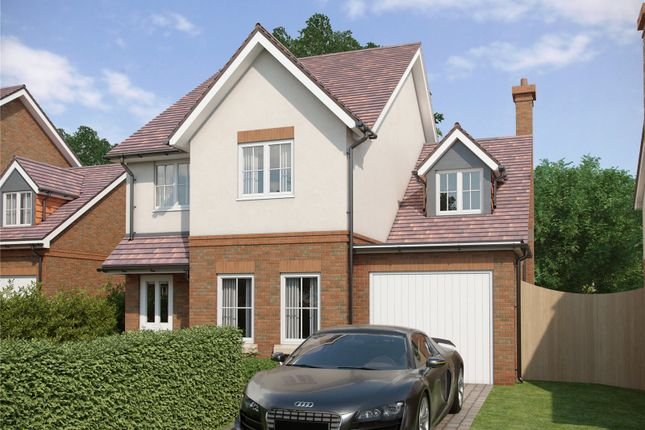 Thumbnail Detached house for sale in The Paddocks, Warnford Road, Corhampton