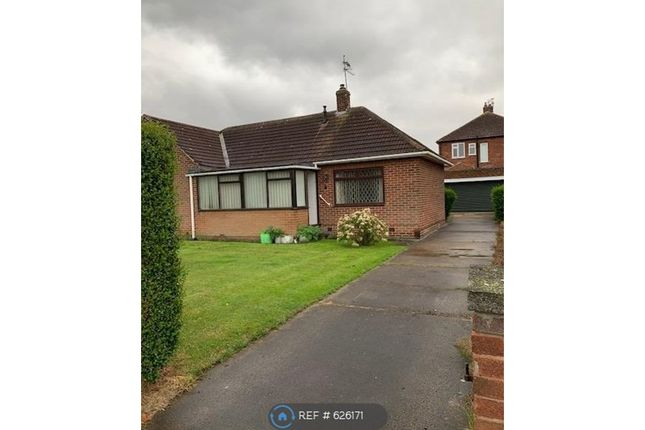 Thumbnail Detached house to rent in Gypsy Lane, Marton-In-Cleveland, Middlesbrough