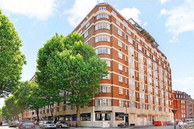 Studio to rent in Chelsea Cloisters, Sloane Avenue, London SW3