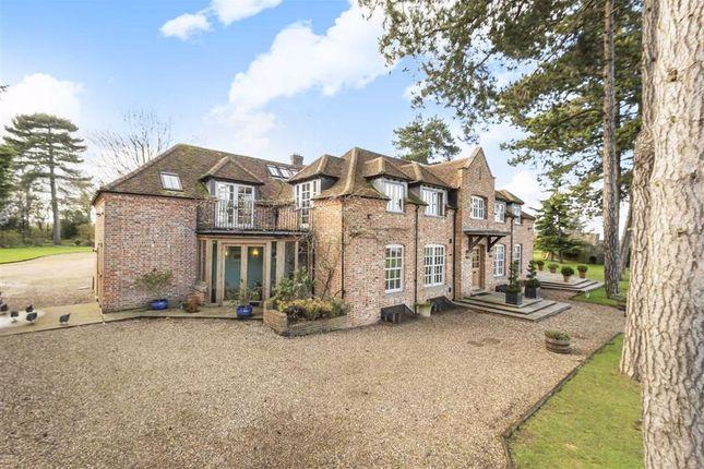 Thumbnail Detached house to rent in Bayford Lane, Bayford, Hertfordshire