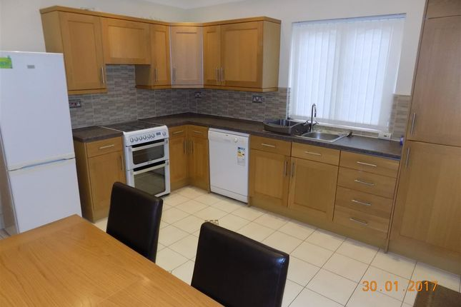 Thumbnail Cottage to rent in Maes Y Ffynnon, Welsh Hook Road, Hayscastle Cross, Haverfordwest