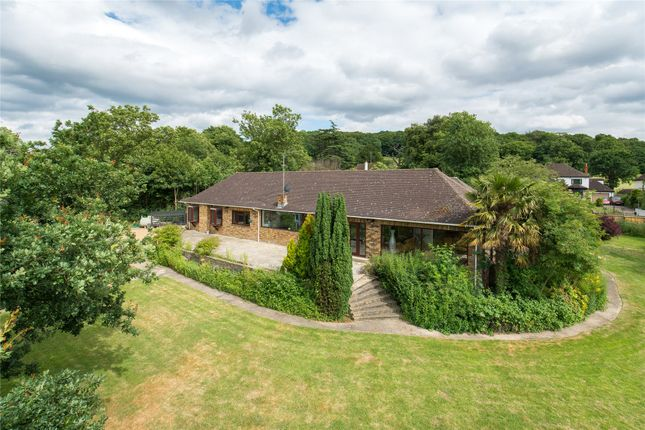 Thumbnail Bungalow for sale in Mott Street, Loughton, Essex