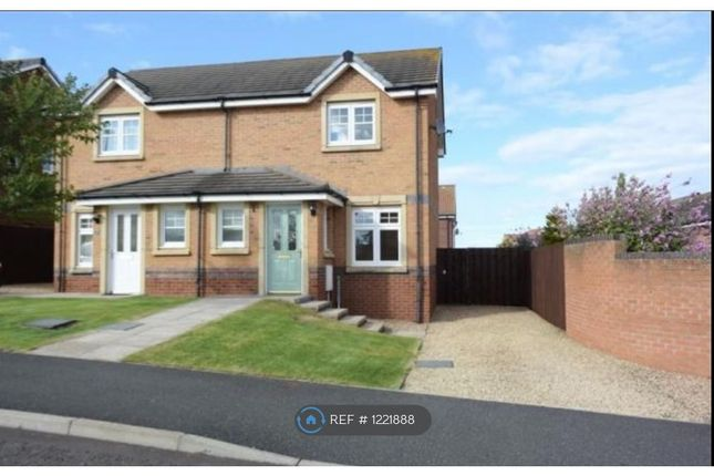 Thumbnail Semi-detached house to rent in Hallydown Crescent, Eyemouth