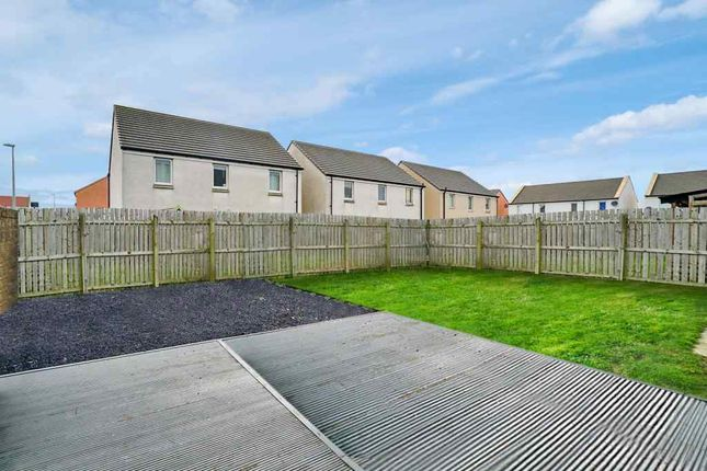 Garden At Back of Newlands Crescent, Cove, Aberdeen AB12