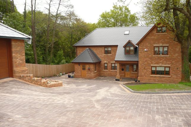 Thumbnail Detached house to rent in Heol Y Delyn, Lisvane, Cardiff