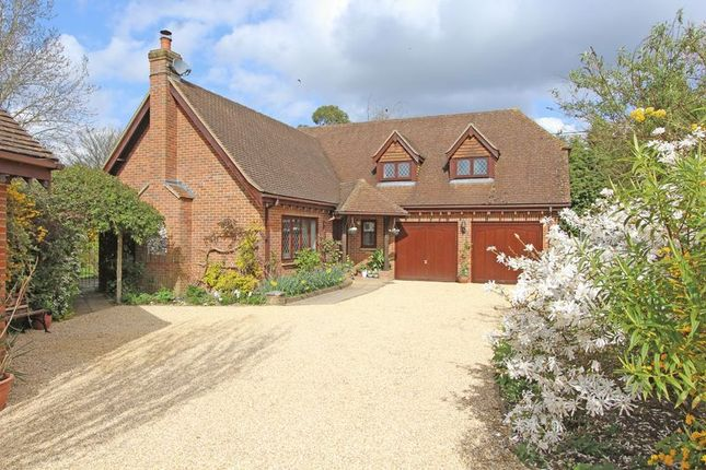 Thumbnail Detached house for sale in St. Andrews Close, Timsbury, Romsey