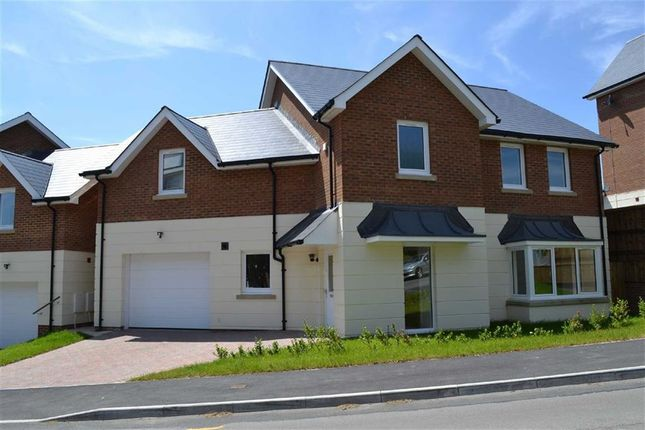 Thumbnail Detached house for sale in Langland Court, Langland Court Road, Swansea, Swansea