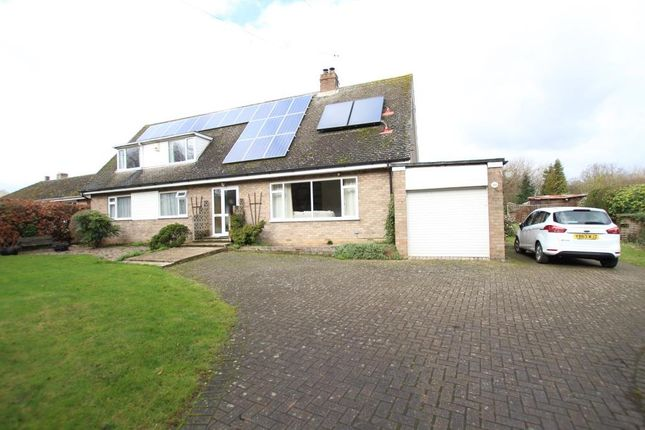 Thumbnail Detached bungalow for sale in Stretham Road, Wilburton, Ely