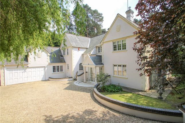 Thumbnail Detached house for sale in Tekels Park, Camberley, Surrey