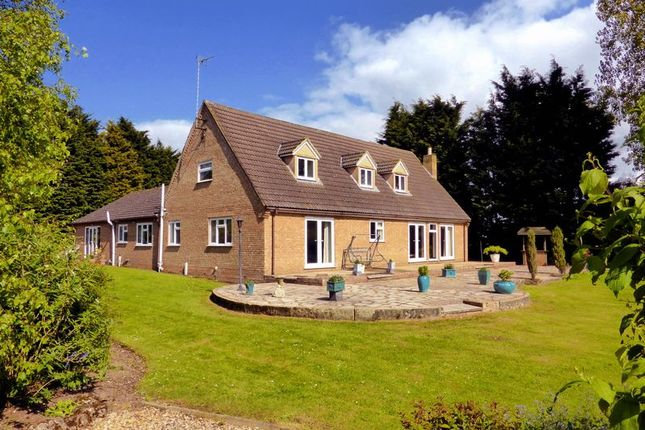 Thumbnail Country house for sale in Rands Drove, Marshland St James, Norfolk