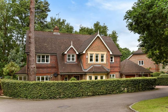 Thumbnail Detached house to rent in The Spinney, Camberley