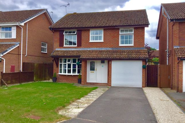 Thumbnail Detached house for sale in Magpie Drive, Totton, Southampton