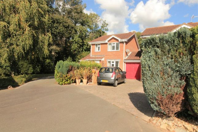Thumbnail Detached house for sale in Spring Lane, Bexhill On Sea, East Sussex
