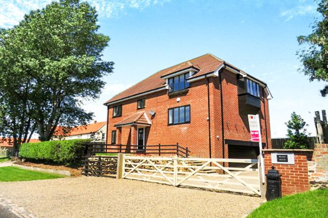 Thumbnail Detached house for sale in Old Stillington, Stillington, Stockton-On-Tees