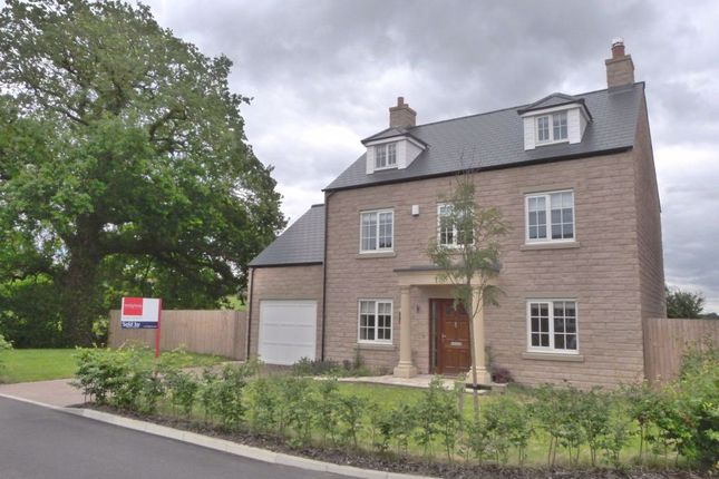 Thumbnail Detached house to rent in Hawthorn Grove, Hunsingore