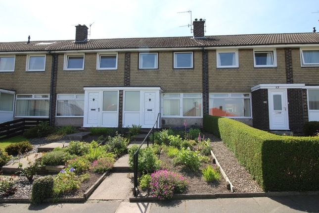 Thumbnail Terraced house to rent in Hillcrest, Prudhoe