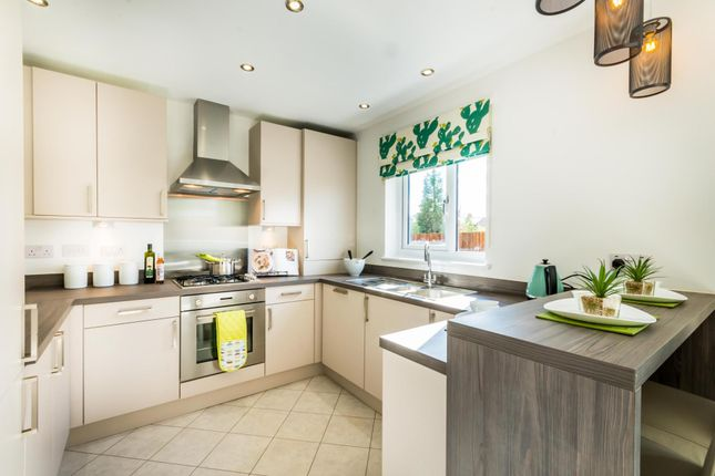 "3 bedroom semi-detached house for sale in ""Caplewood"" at Moorfields, Willaston, Nantwich"