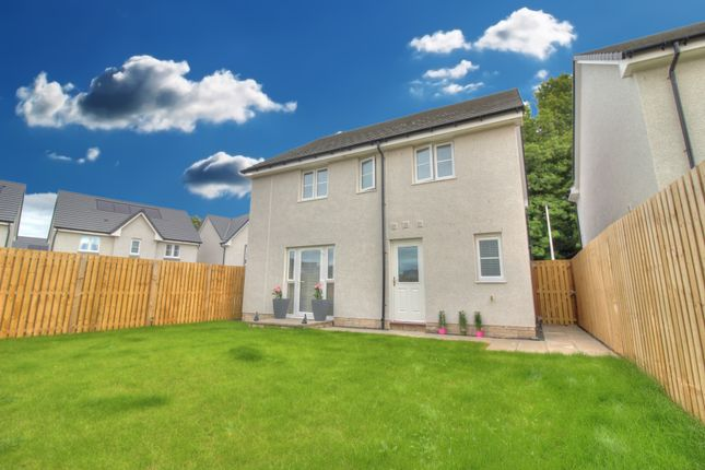 Rear Elevation of Angus Gardens, Monifieth, Dundee DD5