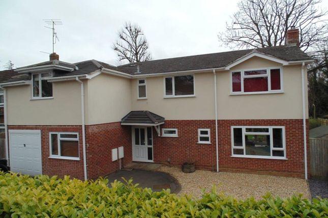 5 bedroom detached house for sale in Neville Close, Basingstoke