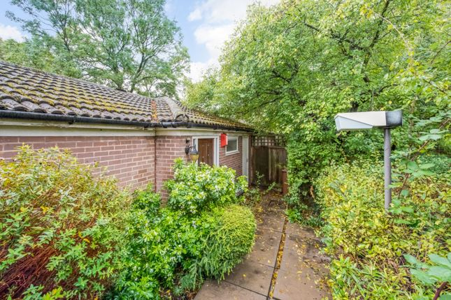 Thumbnail Bungalow for sale in The Loggetts, Alleyn Park, London