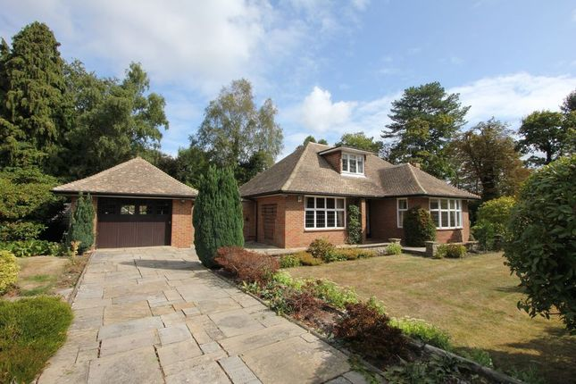 Thumbnail Bungalow to rent in Clevehurst Close, Stoke Poges, Slough