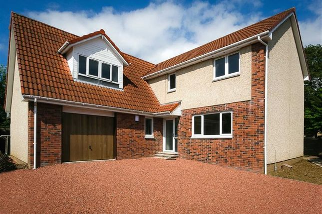 Thumbnail Detached house for sale in Hillcrest Place, Denny, Stirlingshire