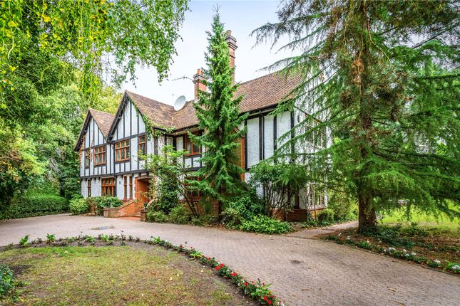 Thumbnail Detached house for sale in The South Border, Purley, Surrey