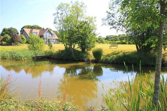 Thumbnail Detached house for sale in Moons Green, Wittersham, Tenterden, Kent