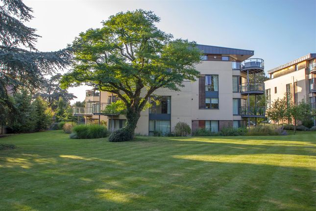 Thumbnail Flat for sale in Meridian Gardens, Newmarket
