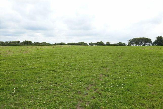 Thumbnail Land for sale in Bradworthy, Holsworthy