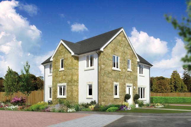 "4 bedroom detached house for sale in ""Windsor"" at Earl Matthew Avenue, Arbroath"