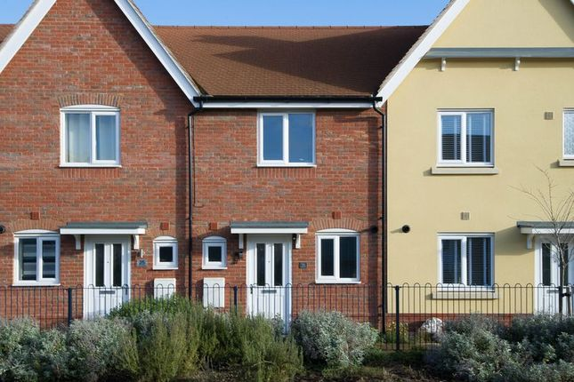 2 bed terraced house for sale in Crocus Close, Eynesbury, St. Neots