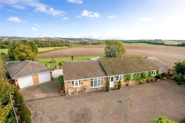 Thumbnail Detached bungalow for sale in Britwell Road, Watlington, Oxfordshire