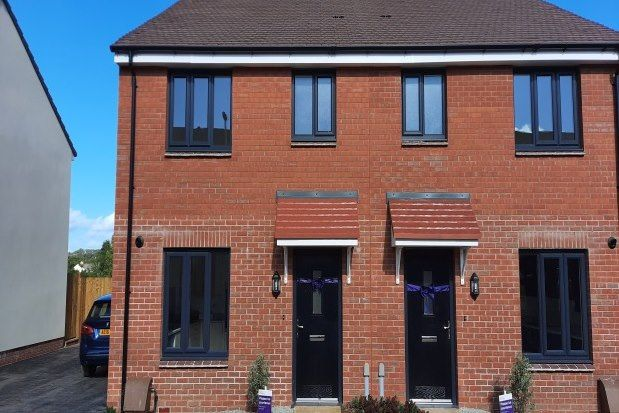 Thumbnail Property to rent in Sion Close, Honiton