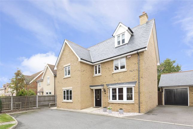 Thumbnail Detached house for sale in Belgrave Place, Springfield, Essex
