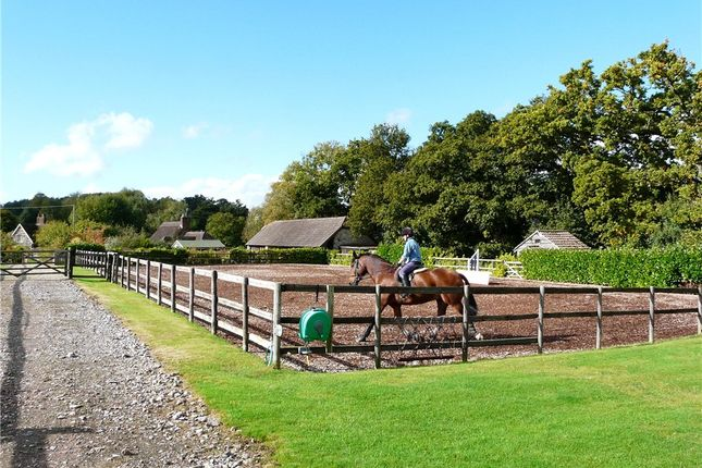 Thumbnail Equestrian property for sale in Fontmell Magna, Shaftesbury, Dorset