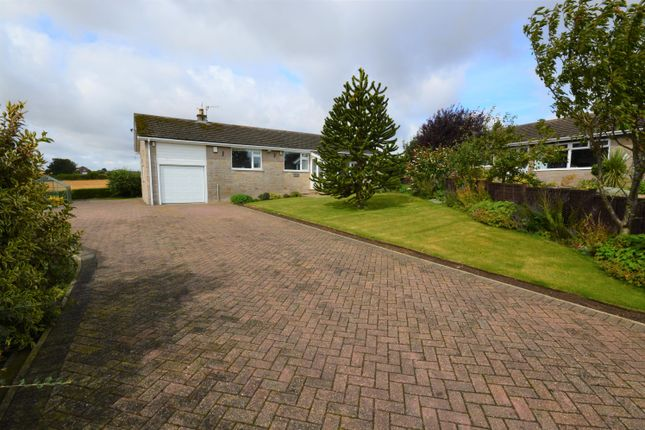 Thumbnail Detached bungalow for sale in Wentworth Way, Hunmanby, Filey