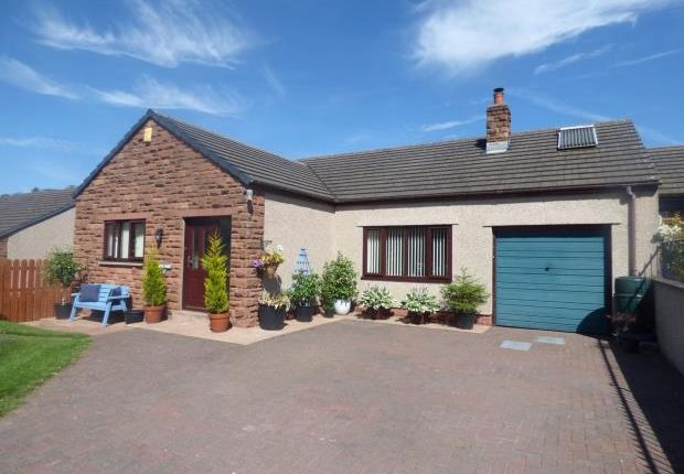 Thumbnail Bungalow for sale in The Croft, Warcop, Appleby-In-Westmorland