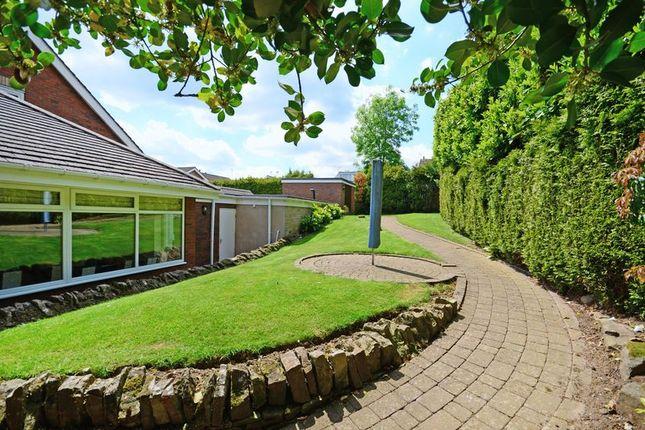 Side Garden of Rivendell, Derriman Glen, Ecclesall, Sheffield S11