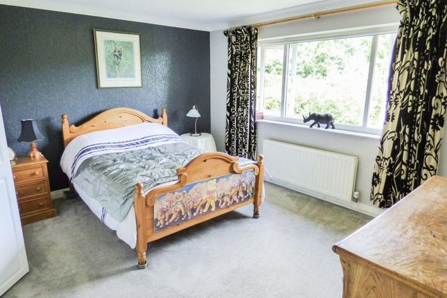 Photo 13 of Dinghouse Wood, Buckley CH7