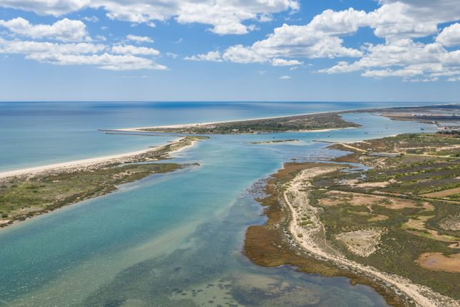Thumbnail Land for sale in Vale Carangueijo, Tavira (Santa Maria E Santiago), Tavira, East Algarve, Portugal