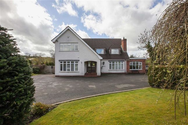 Thumbnail Detached house for sale in Lairds Road, Annahilt, Down