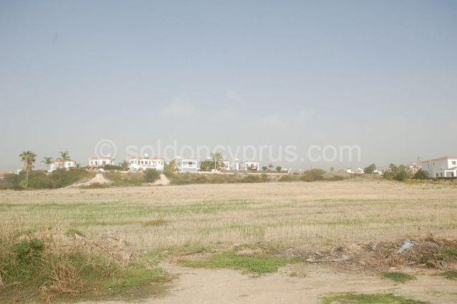 Thumbnail Land for sale in Potima, Kissonerga, Paphos, Cyprus